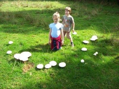 Champignon mushroom soup cross stitch les champignons - Comment cuisiner les champignons ...